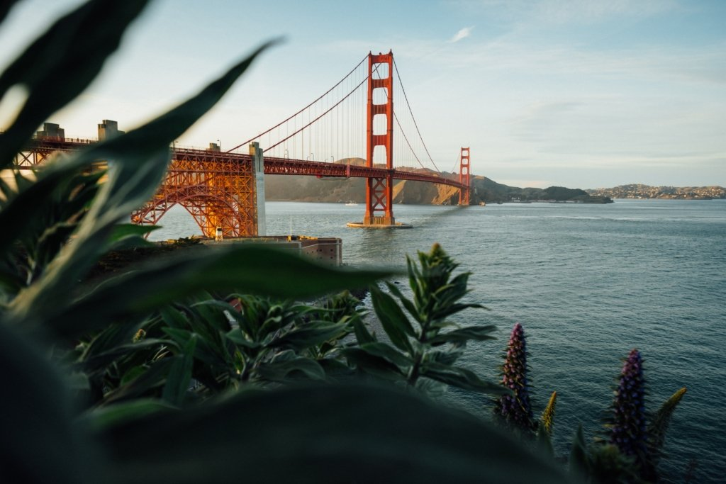 People who book their tours on mobile spend 50% more, according to Arival — Tim Foster / Unsplash online conversions Ventrata's web checkouts San Francisco web checkouts Christian watts Skyline